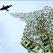 L'avion bombarde une dernière fois les positions d'AQMI avant d'aller récupérer l'otage français
