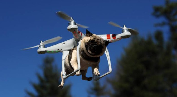 drone pour chien